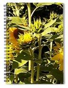 Shout Out Summer Spiral Notebook