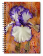 Show-off Spiral Notebook