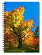 Show Off Spiral Notebook