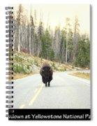 Showdown At Yellowstone Spiral Notebook