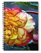 Showgirl Spiral Notebook