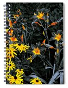 Showoff Competition Spiral Notebook