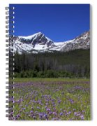 Showy Penstemon Wildflowers Sawtooth Mountains Spiral Notebook