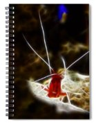 Shrimp Who Won The Fight Spiral Notebook