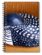Shy Loon Rock Spiral Notebook