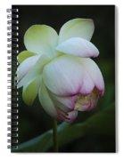Shy Lotus Spiral Notebook