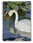 Shy Swan Spiral Notebook