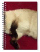 Siamese Expressive Brushstrokes Spiral Notebook