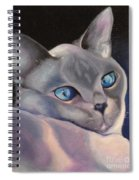 Siamese In Blue Spiral Notebook