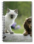 Siamese Kitten And Dachshund Puppy Spiral Notebook