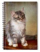 Siberian Forest Kitten II Spiral Notebook