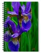 Siberian Iris Spiral Notebook