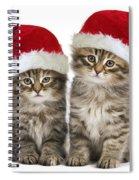 Siberian Kittens In Hats Spiral Notebook