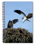 Sibling Rivalry Spiral Notebook