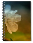 Side View Of An Apple Blossom Spiral Notebook
