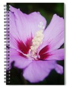 Side Yard Flower 1 Spiral Notebook