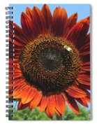 Sienna Sunflower Spiral Notebook