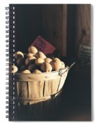 Sierra Gold Spiral Notebook