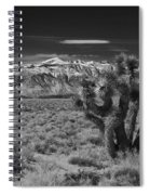 Sierra Nevada Mtns And Joshua Tree Img 0604 Spiral Notebook