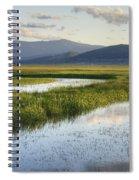 Sierra Valley Wetlands Spiral Notebook