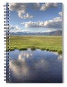 Sierra Valley Wetlands II Spiral Notebook