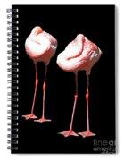Siesta In Pink Spiral Notebook
