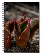 Sign Of Spring In Red Spiral Notebook