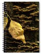 Signs Of Autumn Spiral Notebook