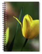 Signs Of Spring II Spiral Notebook