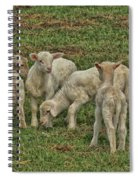Silence Of The Lambs Spiral Notebook