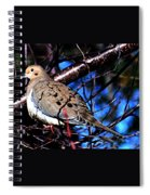Silent Dove Sm  Spiral Notebook