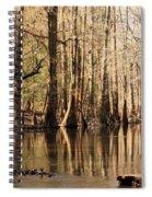 Silent Reflections Spiral Notebook