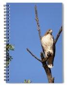 Silent Watch Spiral Notebook