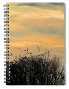 Silhouette Of Grass And Weeds Against The Color Of The Setting Sun Spiral Notebook