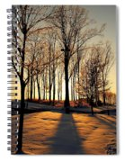 Silhouette Of Trees And Ice Spiral Notebook