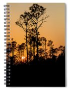 Silhouette Of Trees At Sunset Spiral Notebook