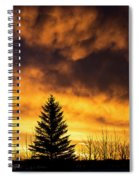 Silhouetted Evergreen Tree Spiral Notebook