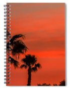 Silhouetted Palm Trees Spiral Notebook