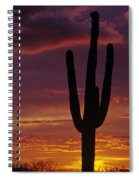 Silhouetted Saguaro Cactus Sunset  Arizona State Usa Spiral Notebook