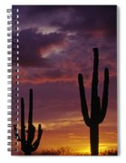 Silhouetted Saguaro Cactus Sunset  Spiral Notebook
