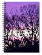 Silhouettes Against Pink Skies Spiral Notebook