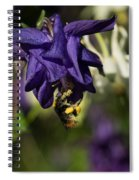 Silky Blue Columbine And A Busy Bee Spiral Notebook
