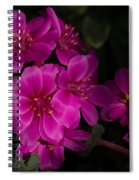 Silky Cactus Spiral Notebook