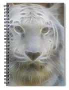Silver-7963-fractal Spiral Notebook