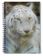 Silver-7988-fractal Spiral Notebook