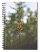 Silver Argiope Spiral Notebook