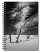 Silver Lake Dune With Dead Trees And Cirrus Clouds In Black And White Spiral Notebook