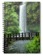 Silver Lake Falls Spiral Notebook