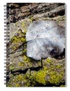 Silver Leaf Spiral Notebook
