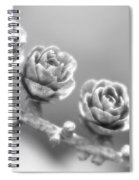 Silver Lining.... Spiral Notebook